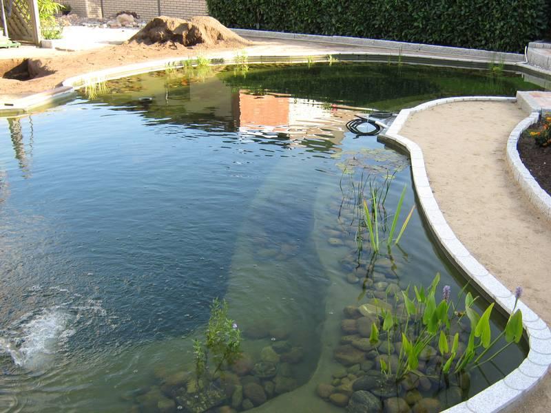 Gartenteiche an terrasse for Gartenteich mit fischen