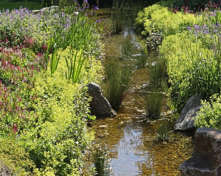 Gartenteiche - E&M Gartenwelten