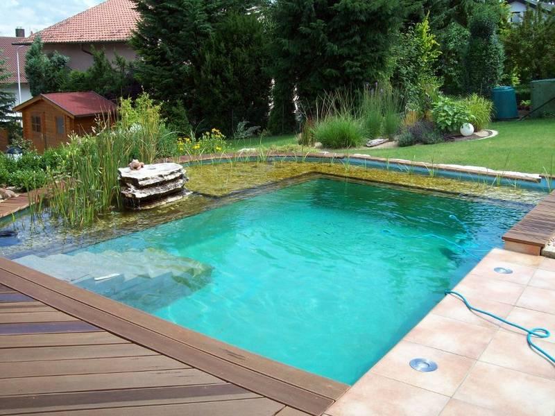 Schwimmteiche e m gartenwelten - Gartenanlage mit pool ...